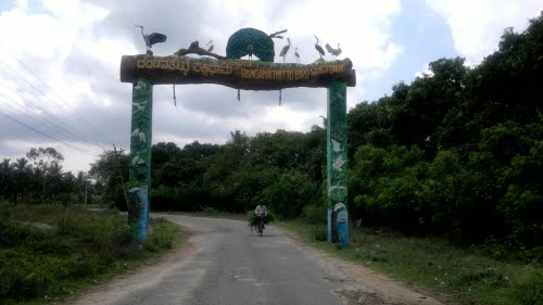 Ranganathittu Bird sanctuary – Mysore, Karnataka