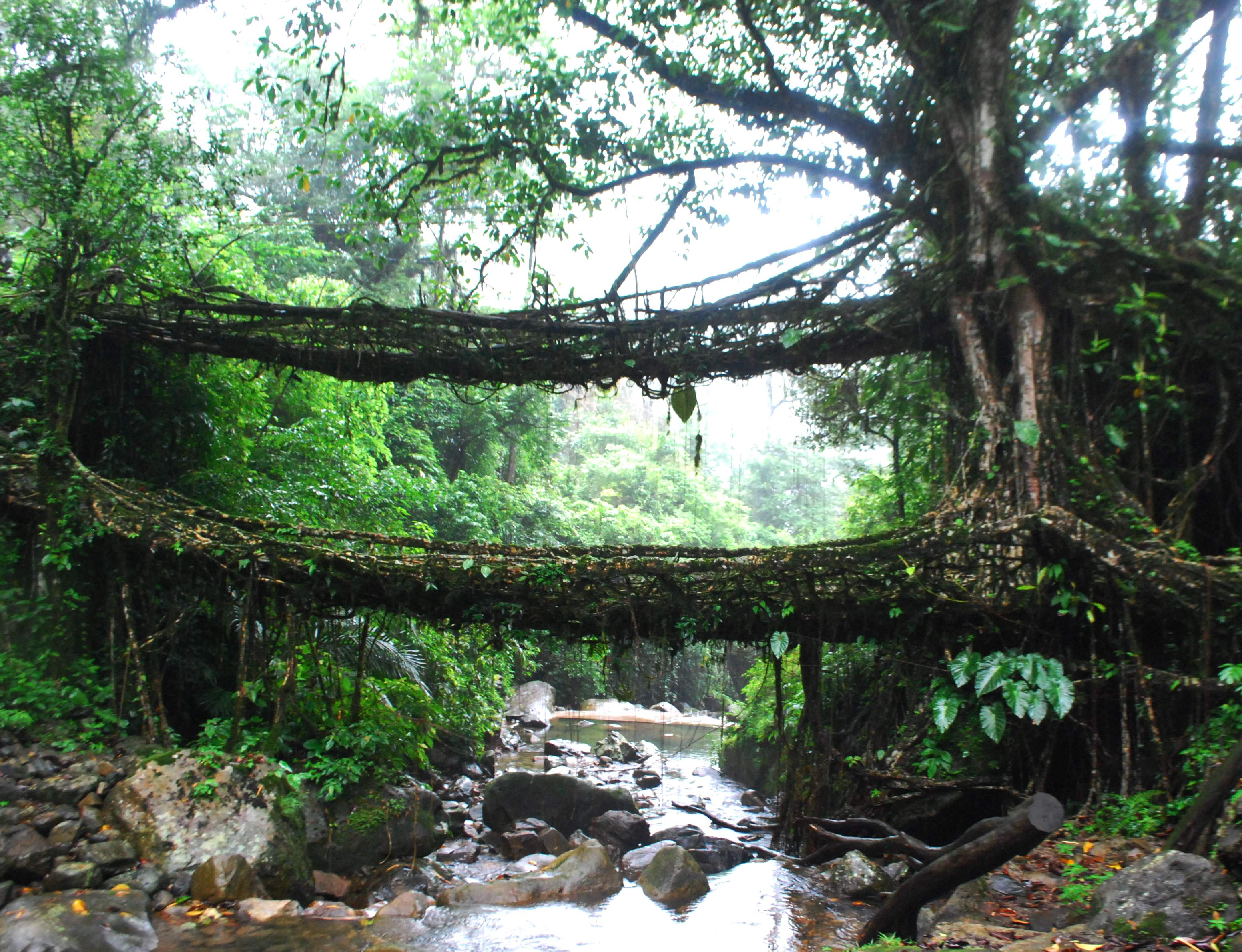 Backpacking North East India (Part 4 of 5) – Meghalaya