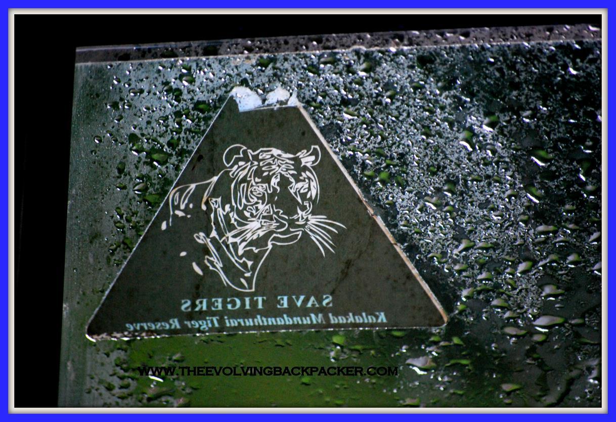 Kalakad Mundanthurai Tiger reserve (KMTR), Tirunelveli, Tamil Nadu – A common man in an uncommon setting