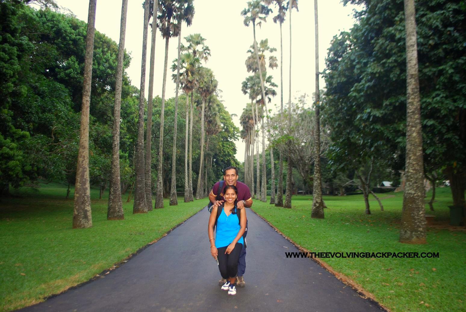 Peradeniya Gardens, Kandy