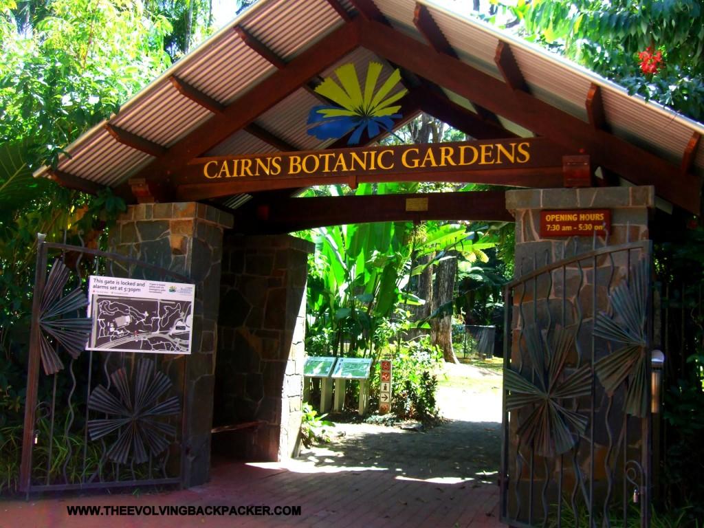 Cairns - Botanic Gardens
