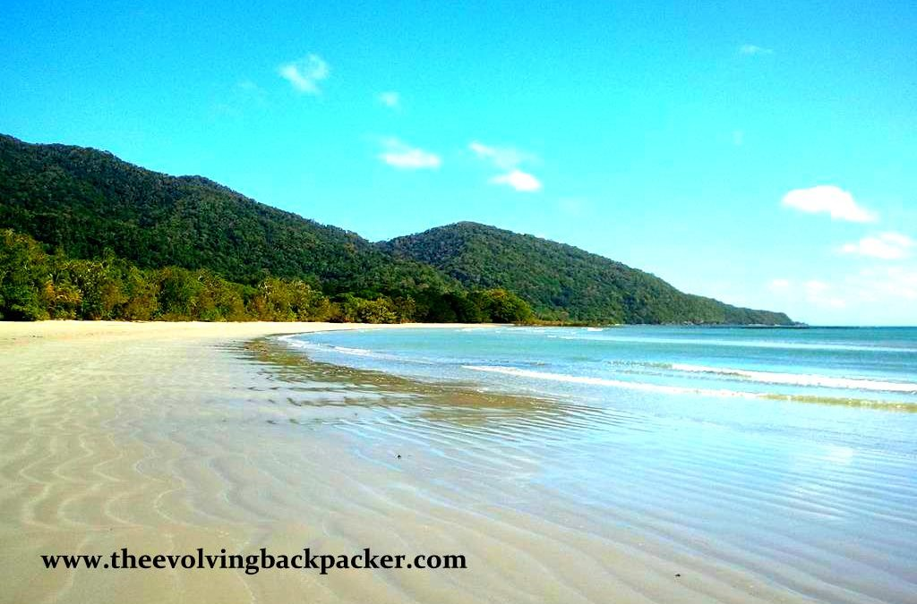 Daintree and Cape Tribulation – Where the Rainforest meets the Sea